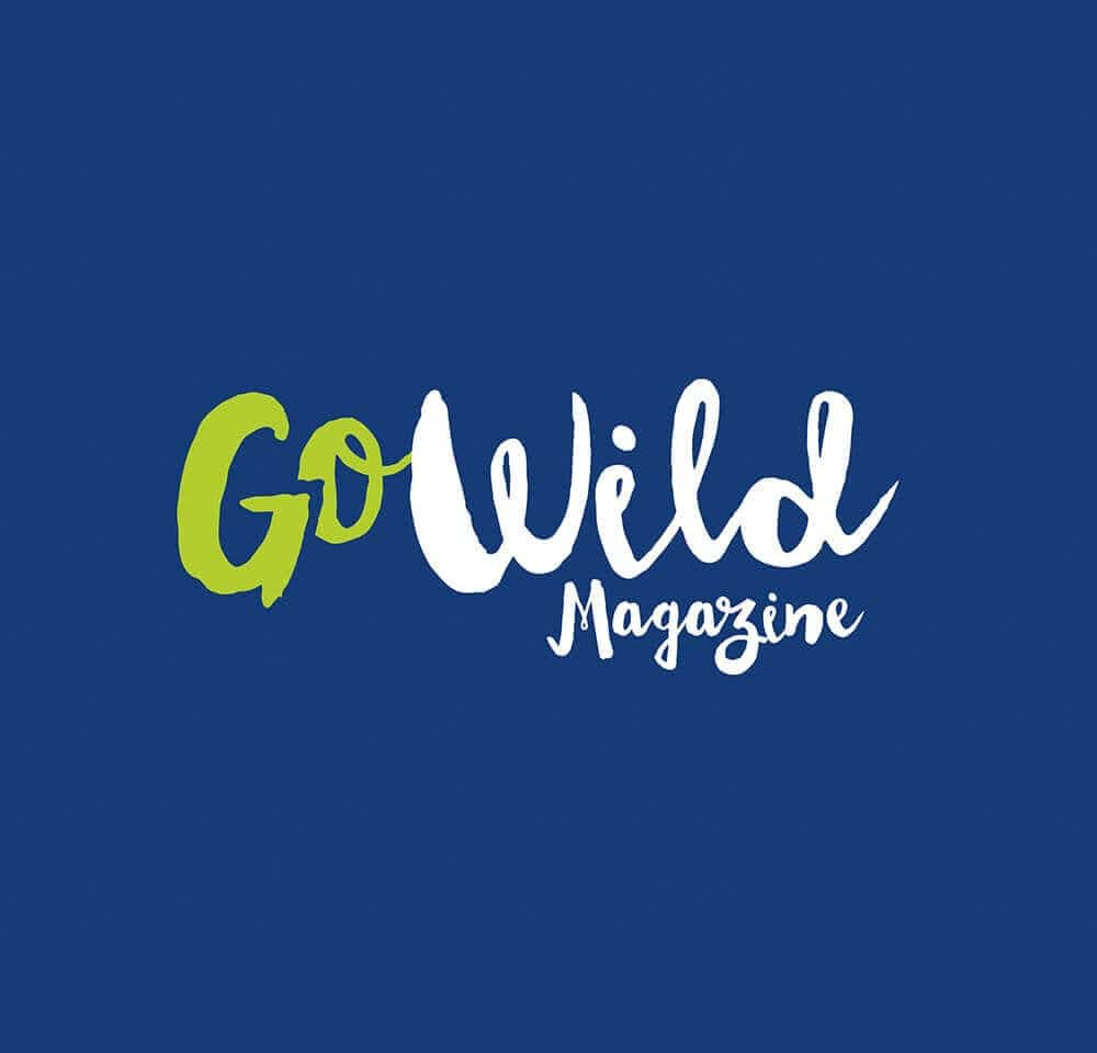 Gowild brainstorm design | branding, graphic & website design limerick