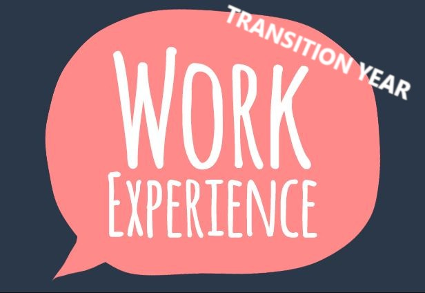 Transition Year Work Placement
